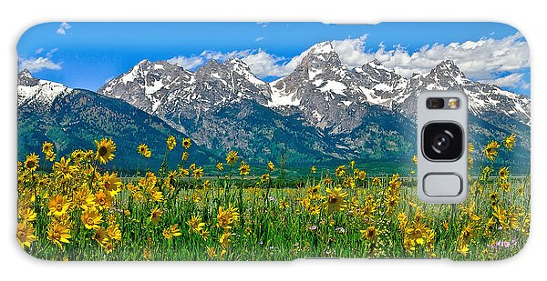 Teton Peaks And Flowers Galaxy Case