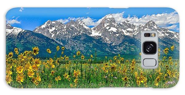 Teton Peaks And Flowers Galaxy Case
