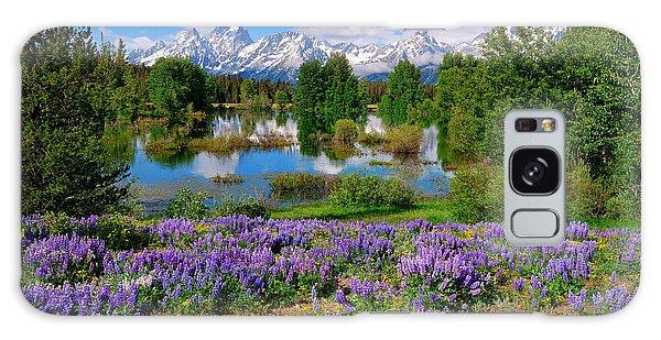 Teton Spring Lupines Galaxy Case