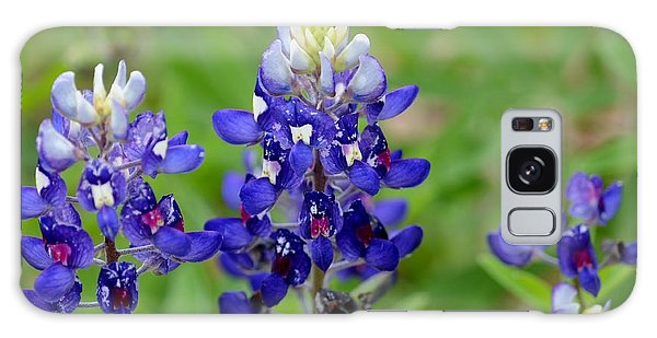 Texas Bluebonnets Galaxy Case