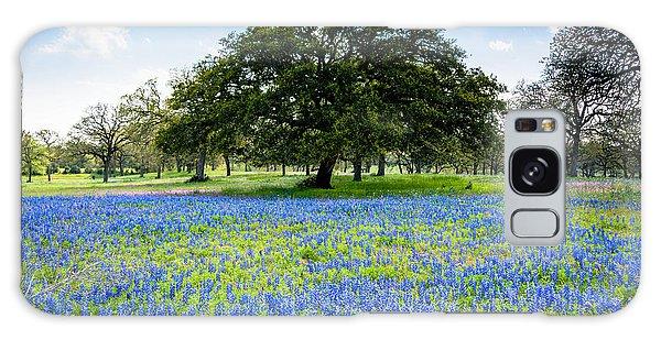Texas Bluebonnets Galaxy Case