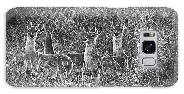Texas Deer Galaxy Case