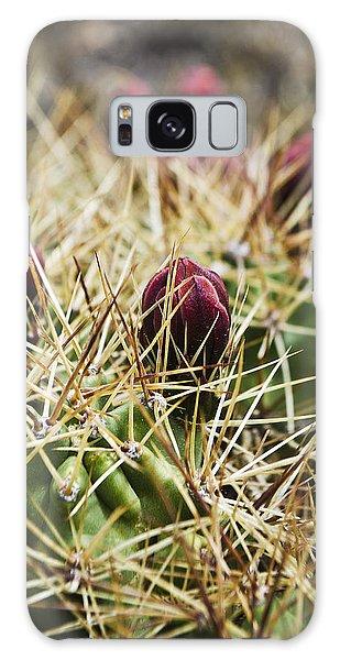 Texas Blooming Cactus Galaxy Case