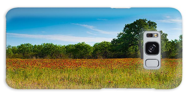Texas Hill Country Meadow Galaxy Case