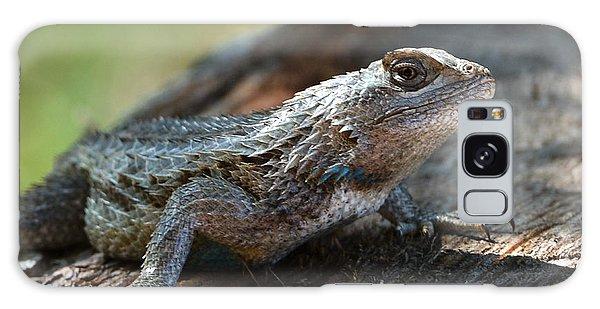 Texas Lizard Galaxy Case by John Johnson