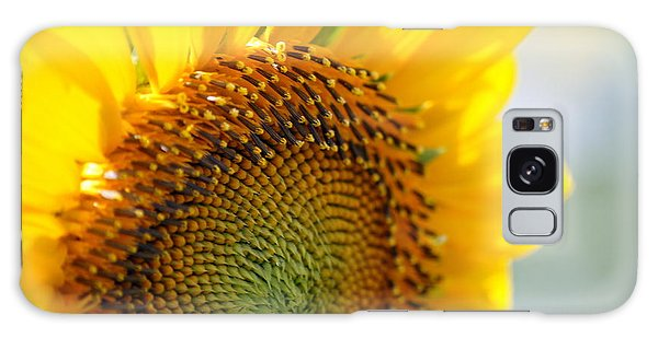 Texas Sunflower Galaxy Case