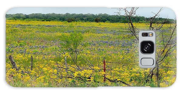 Texas Wildflowers And Mesquite Tree Galaxy Case
