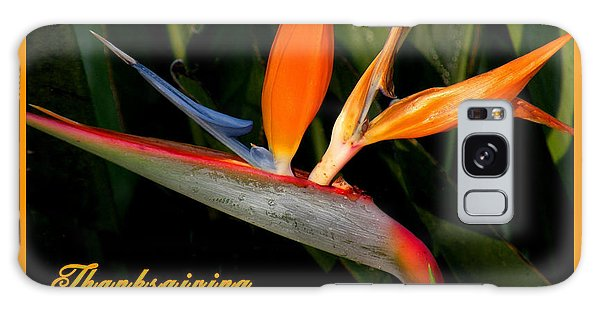 Thanksgiving Card Bird Of Paradise Galaxy Case
