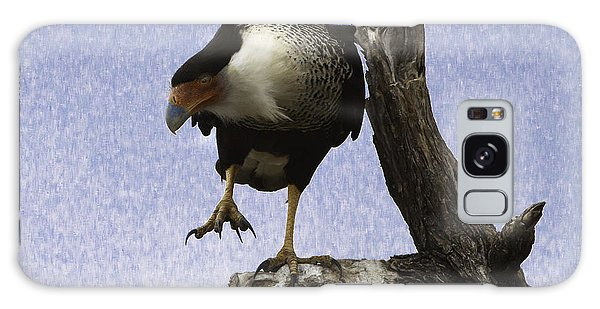 Galaxy Case featuring the photograph That Caracara Stare by Donald Brown