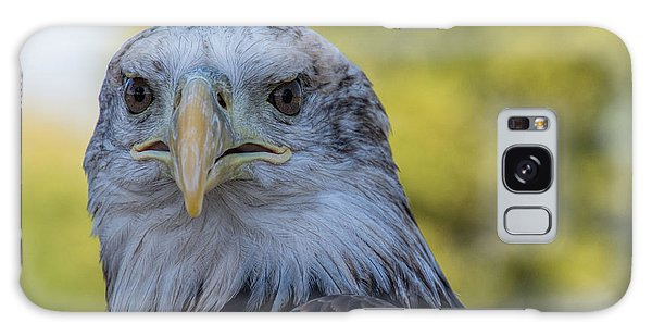 Galaxy Case featuring the photograph The American Eagle by Jeanne May