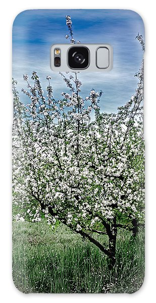 The Apple Tree Blooms Galaxy Case