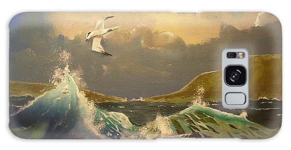 The Arctic Tern Galaxy Case