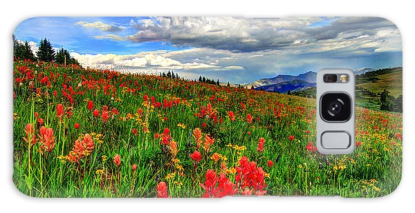 The Art Of Wildflowers Galaxy Case by Scott Mahon