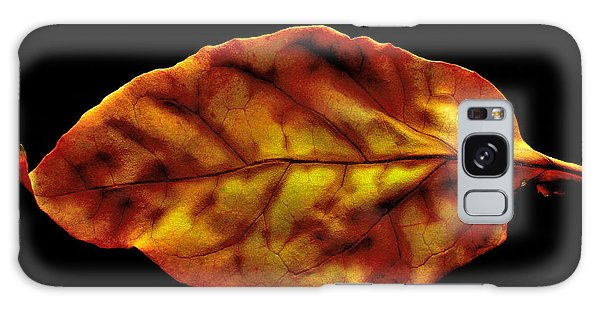 The Autumn Leaf Galaxy Case