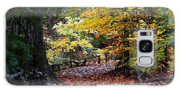 The Autumn Path Galaxy Case