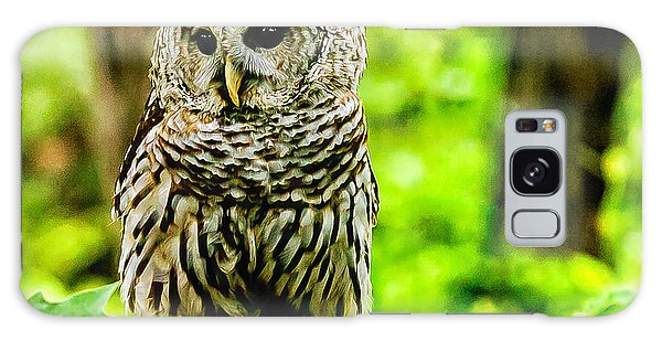 The Barred Owl Galaxy Case