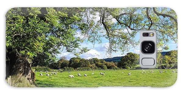 The Beautiful Cheshire Countryside - Large Oak Tree Frames A Field Of Lambs Galaxy Case