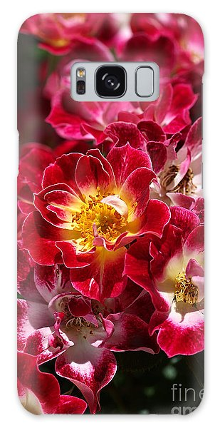 The Beauty Of Carpet Roses  Galaxy Case