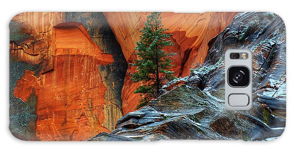 The Beauty Of Sandstone Zion Galaxy Case by Bob Christopher