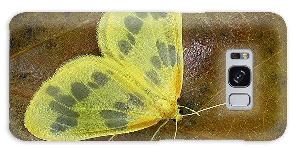 The Beggar Moth Galaxy Case by William Tanneberger