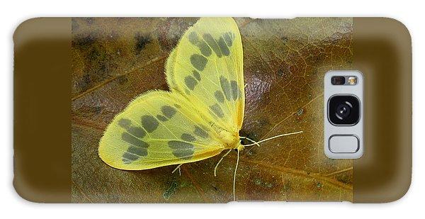 The Beggar Moth Galaxy Case