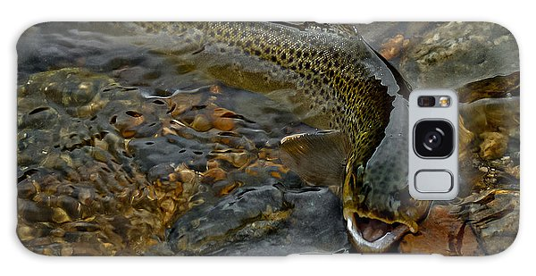 The Brown Trout Galaxy Case