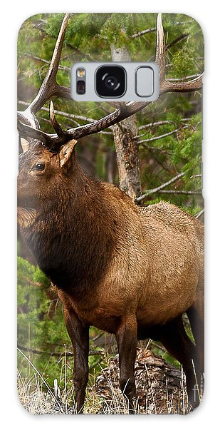 The Bull Elk Galaxy Case by Steven Reed