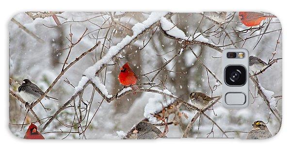 Limb Galaxy Case - The Cardinal Rules by Betsy Knapp