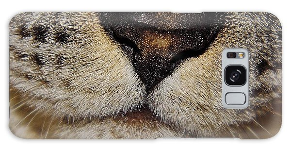 The - Cat - Nose Galaxy Case by D Hackett