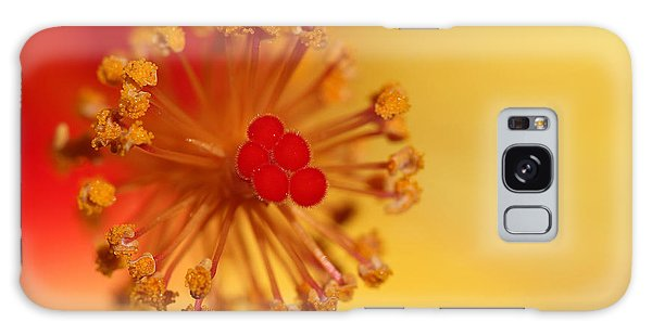 The Center Of The Hibiscus Flower Galaxy Case by Debbie Oppermann
