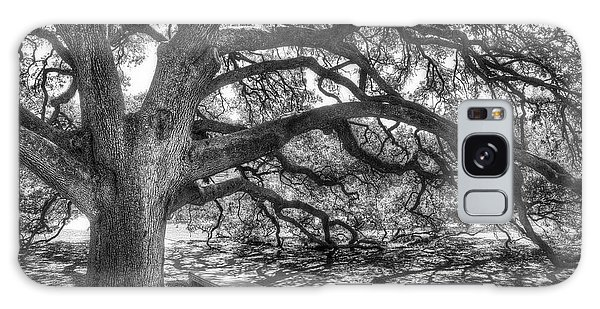 Tree Galaxy Case - The Century Oak by Scott Norris