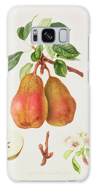The Chaumontelle Pear Galaxy Case by William Hooker