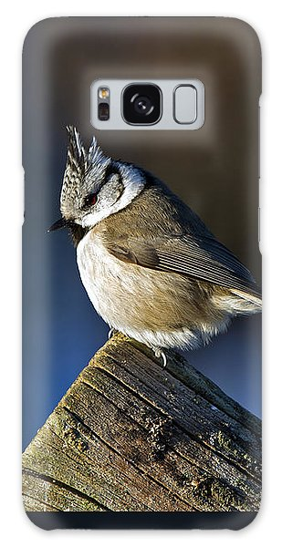 The Crested Tit In The Sun Galaxy Case