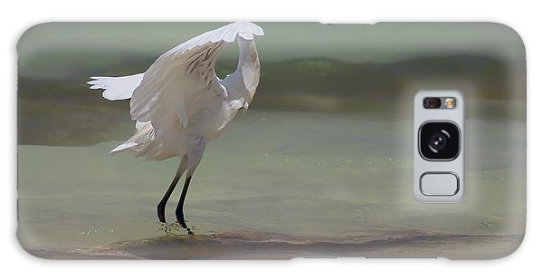 Egret Galaxy Case - The Dance by John Edwards