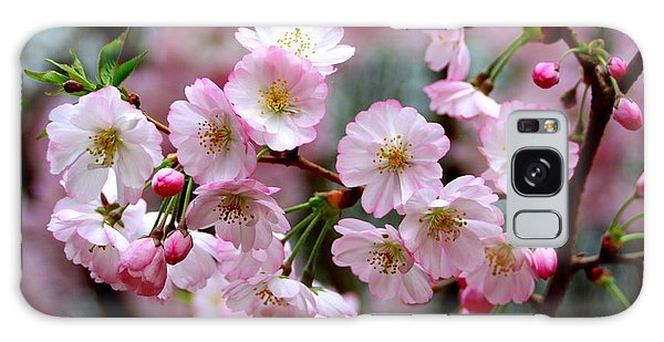 The Delicate Cherry Blossoms Galaxy Case by Patti Whitten