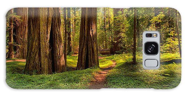 The Destination - California Redwoods I Galaxy Case