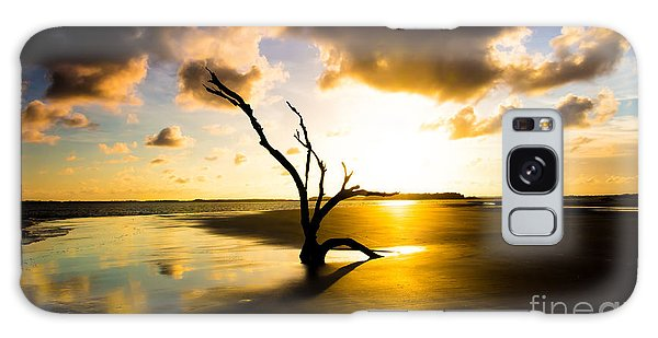 The Driftwood Tree Folly Beach Galaxy Case