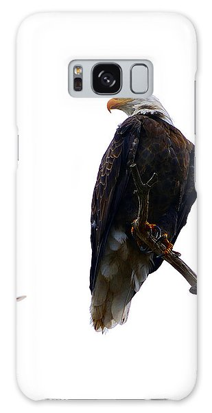 The Eagle And The Hummingbird Galaxy Case