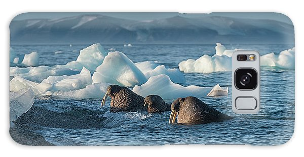 Ice Galaxy Case - The Family by Marc Pelissier