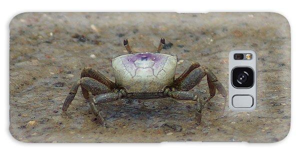 The Fiddler Crab On Hilton Head Island Galaxy Case