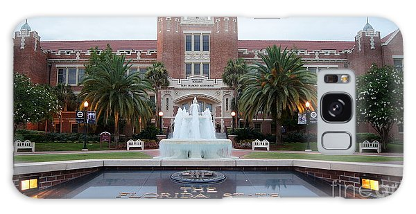 The Florida State University Galaxy Case by Paul  Wilford