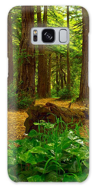 The Forest Of Golden Gate Park Galaxy Case
