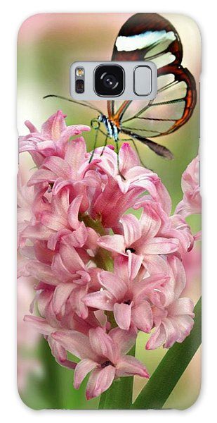 The Glasswing Galaxy Case