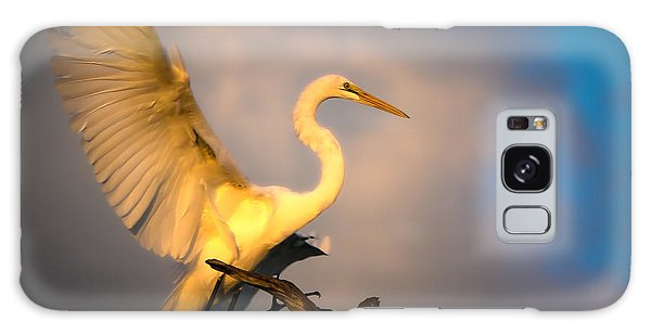 The Golden Egret Galaxy Case