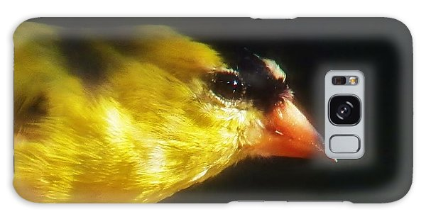 The Goldfinch Galaxy Case