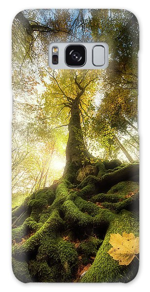 Woods Galaxy Case - The Goodbye Of A Leaf by Alberto Ghizzi Panizza