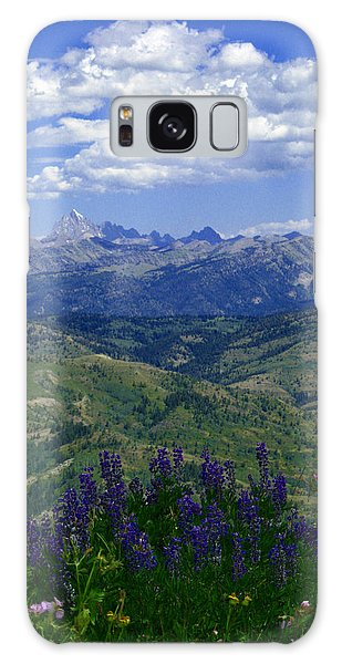The Grand And Lupines Galaxy Case