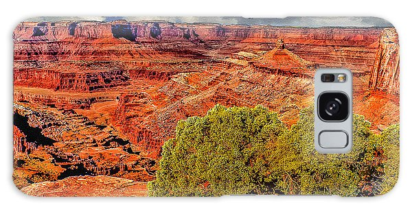 The Grand Canyon Dead Horse Point Galaxy Case