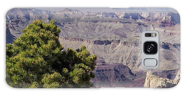 The Grand Canyon Galaxy Case by Marianne Campolongo