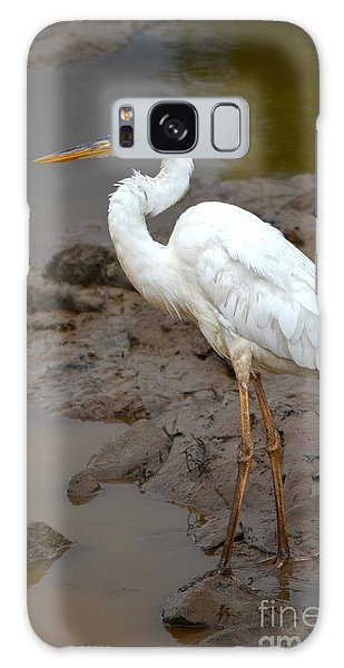 The Great White Heron  Galaxy Case by Kathy Gibbons